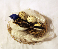 Птичка перьевая в гнезде - RF1210-523004