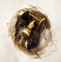 Птички перьевые в гнезде - RF1210-523008