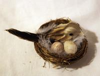 Птичка перьевая в гнезде - 2 шт. в наборе - RF1210-523020